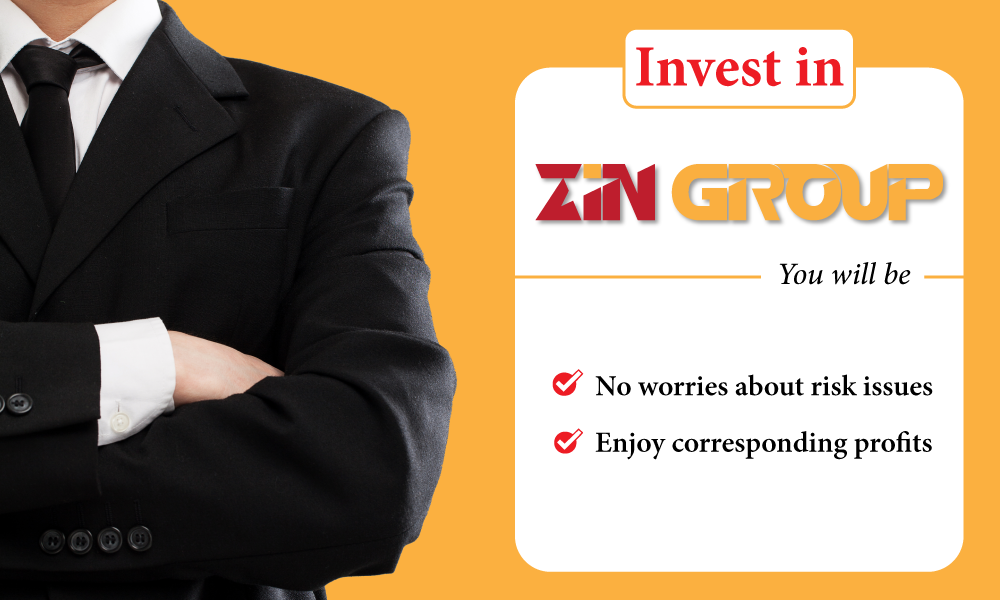 Why should invest in Zin Group?
